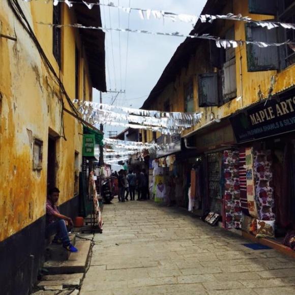 アユルベーダ発祥の地、南インドケララへ