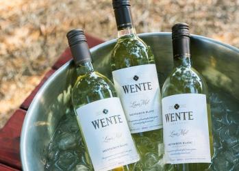 アロマ豊かな「ソーヴィニヨン・ブラン」に出合う、カリフォルニアワインの旅。【前編】