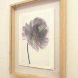 """写真家・林雅之が至近距離から捉えた、""""花""""の生命力を感じる展覧会。"""